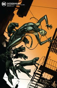 [Catwoman #22 (Card Stock J T Tedesco Variant Edition) (Product Image)]