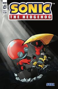 [Sonic The Hedgehog #30 (Cover B Skelly) (Product Image)]