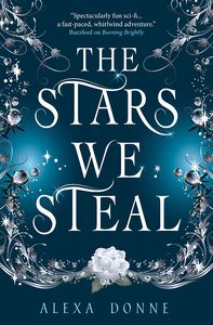 [The Stars We Steal (Product Image)]