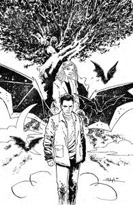 [Angel & Spike #14 (Cover C Bowyer Variant) (Product Image)]