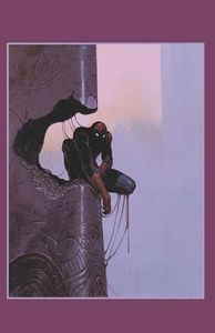 [Amazing Spider-Man #800 (Moebius Virgin Variant) (Product Image)]