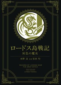 [Record Lodoss War: The Grey Witch Gold Edition (Hardcover) (Product Image)]
