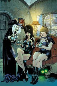 [Elvira: Mistress Of The Dark #10 (Castro Virgin Variant) (Product Image)]
