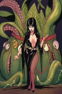 [Elvira: Mistress Of Dark #11 (Seeley Virgin Variant) (Product Image)]