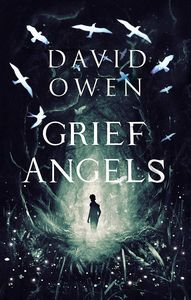 [Grief Angels (Signed Edition) (Product Image)]