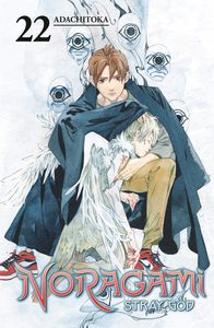 [Noragami Stray God: Volume 22 (Product Image)]