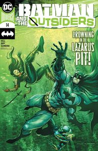 [Batman & The Outsiders #14 (Product Image)]