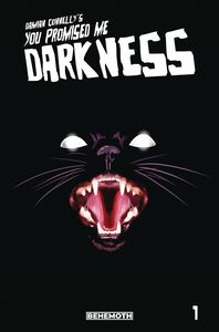 [You Promised Me Darkness #1 (3rd Printing) (Product Image)]