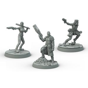 [Fallout: Wasteland Warfare: Survivors: Boston Companions (Product Image)]