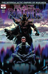 [Black Panther #16 (Product Image)]