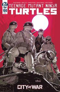 [Teenage Mutant Ninja Turtles: Ongoing #100 (Santolouco Variant) (Product Image)]