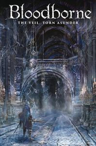 [Bloodborne #14 (Cover C Game Art) (Product Image)]