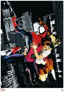 [Marvel: Giclee Print: Ultimate Spider-Man (Signed & Numbered) (Product Image)]