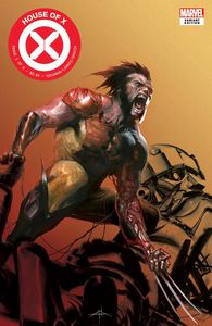 [House Of X #1 (Gabriele Dell'otto Fan Expo Variant) (Product Image)]
