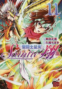 [Saint Seiya: Saintia Sho: Volume 11 (Product Image)]