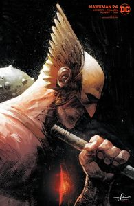 [Hawkman #24 (Gerardo Zaffino Variant Edition) (Product Image)]
