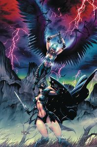[Black Knight #4 (Cover B Casallos) (Product Image)]