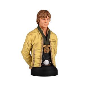 [Star Wars: Mini-Bust: Luke Skywalker (Hero Of Yavin) (Product Image)]