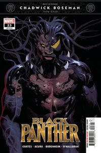 [Black Panther #23 (Product Image)]