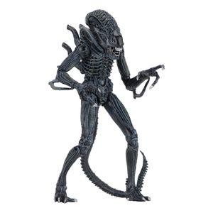 [Aliens: Action Figure: Ultimate Aliens: Alien Warrior Blue (Product Image)]