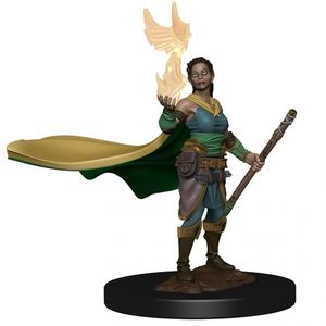 [Dungeons & Dragons: Icons Of The Realms Premium Figure: Druid (Female) (Product Image)]