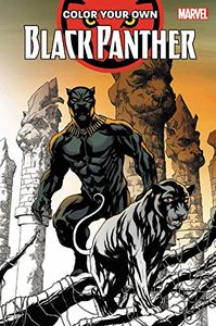 [Color Your Own Black Panther (Product Image)]