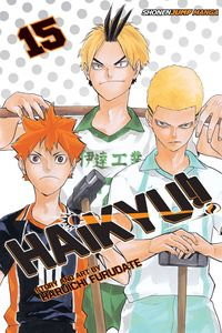 [Haikyu!!: Volume 15 (Product Image)]