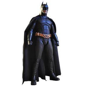 [DC: Batman Begins: Action Figure: Batman (Product Image)]