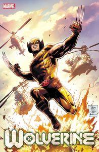 [Wolverine #17 (Daniel Variant) (Product Image)]