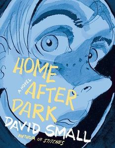 [Home After Dark: A Novel (Hardcover) (Product Image)]