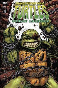 [Teenage Mutant Ninja Turtles: Urban Legends #23 (Eastman Variant) (Product Image)]