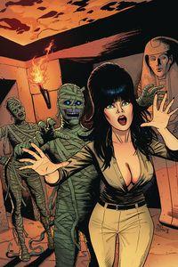 [Elvira: Mistress Of Dark #11 (Cermak Virgin Variant) (Product Image)]