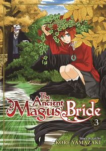 [The Ancient Magus' Bride: Volume 3 (Product Image)]