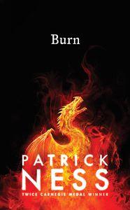 [Burn (Hardcover) (Product Image)]