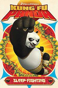 [Kung Fu Panda: Volume 2 (Product Image)]
