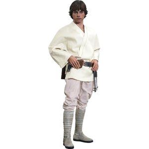 [Star Wars: Hot Toys Deluxe Action Figure: Luke Skywalker (Product Image)]