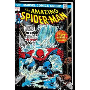 [Amazing Spider-Man: Omnibus: Volume 5 (Kane DM Variant Hardcover) (Product Image)]