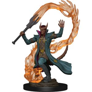 [Dungeons & Dragons: Icons Of The Realms Premium Figure: Sorcerer (Male) (Product Image)]