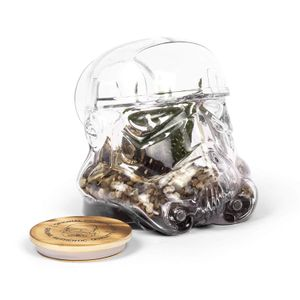 [Star Wars: Terrarium: Original Stormtrooper (Product Image)]